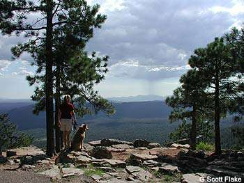The Mogollon Rim