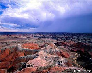 Petrified Forest NP Horseback Riding