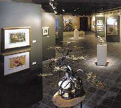 The Vision Gallery