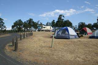 New Melones Lake Campgrounds