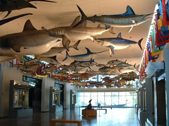 International Game Fish Association's Fishing Hall of Fame & Museum