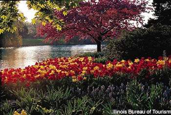 The Chicago Botanic Garden