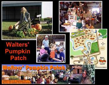Walter's Pumpkin Patch