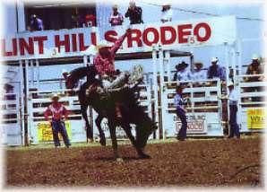 Flint Hills Rodeo Strong City Kansas