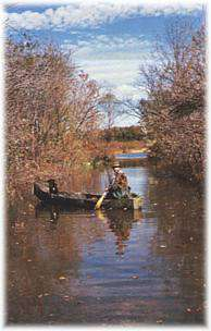 Milford lake ks for Milford lake fishing report