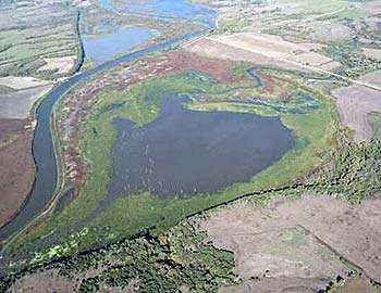 Milford Wetlands Restoration Project