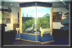 Quivira National Wildlife Refuge Visitors Center
