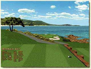 Pebble Beach Simulation
