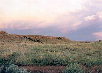 Cimarron National Grassland Auto Tour