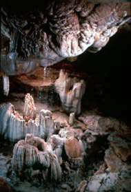 Ozark Lake Area Caves