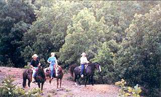 Stockton Lake Area Equestrian Trails