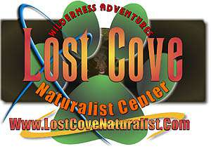 Lost Cove Naturalist