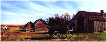Rock Creek Station-Barns