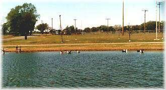 City Park Ponds