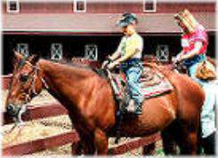 Sequoyah State Park Stables