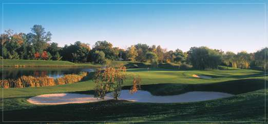 Lindenwood Golf Club -Blue/Gold