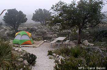 Guadalupe Mountains Camping