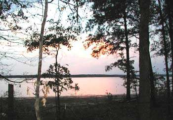 Lake O' The Pines Camping
