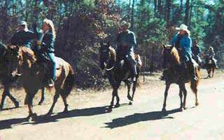 Equestrian Trails at Wright Patman Lake