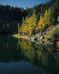 Wenatchee National Forest Campgrounds