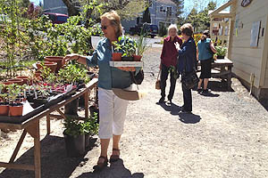 Open House and Plant Sale at Luther Burbank's Experiment Farm