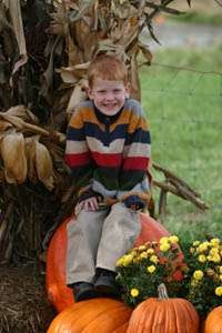KC PUMPKIN PATCH FESTIVAL