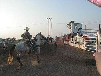 Paradise Creek Festival & Rodeo