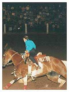 Freedom Rodeo and Old Cowhand Reunion