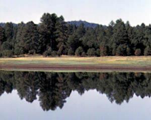 Mormon Lake Az >> Mormon Lake Az Lasr Net
