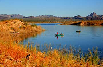 Alamo Lake, Arizona