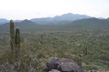 Estrella Mountain Regional Park, Arizona