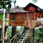 Find Your Inner Child Again in a Treehouse