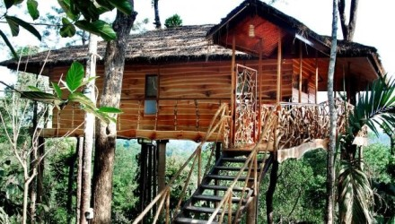 Treehouse_rental_2